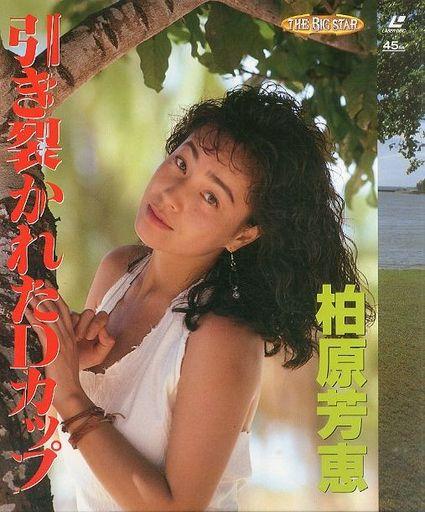柏原芳恵さんのポートレート