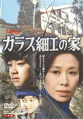 【中古】国内TVドラマDVD ガラス細工の家 全集(3枚組)
