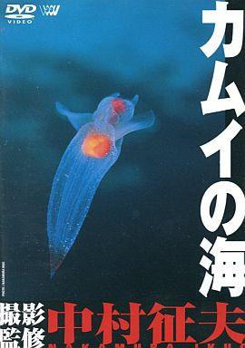 【中古】その他DVD BGV ・カムイの海撮影 : 中村征夫 (( 株 )SME ・インターメディア )