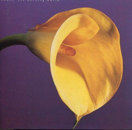 Swans / The Burning World [Import Disc]