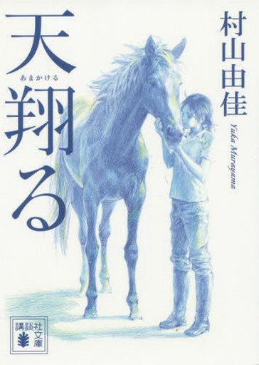 【中古】文庫 <<日本文学>> 天翔る  / 村山由佳