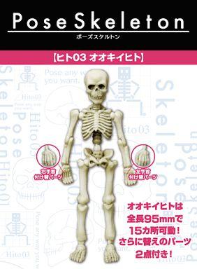 【中古】トレーディングフィギュア 【 パック 】ヒト03 オオキイヒト 「ポーズスケルトン」