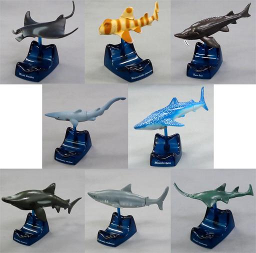 【中古】トレーディングフィギュア 全8種セット 「『地球生命紀行 サメ・エイ。』」