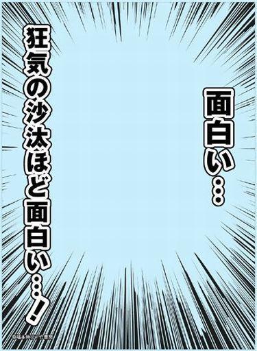 【中古】サプライ ブロッコリースリーブプロテクター【世界の名言】 アカギ「狂気の沙汰ほど面白い・・・!」