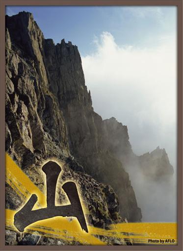 ブロッコリー スリーブ 風林火山 山
