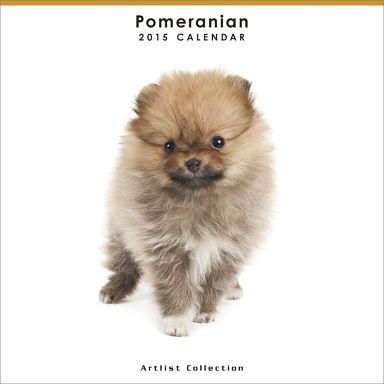 【中古】カレンダー THE DOG ポメラニアン(ミニ・ノーマル) 2015年度ミニカレンダー