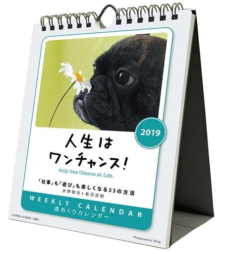 【新品】カレンダー 人生はワンチャンス! 2019年度カレンダー