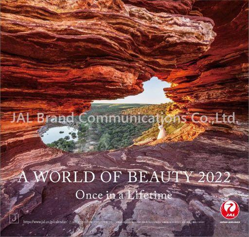 ハゴロモ 予約 カレンダー JAL「A WORLD OF BEAUTY」(普通判) 2022年度カレンダー