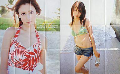 【中古】ポスター(女性) ポスター リア・ディゾン(ボーダー水着) 2007年週刊ヤングジャンプ付録