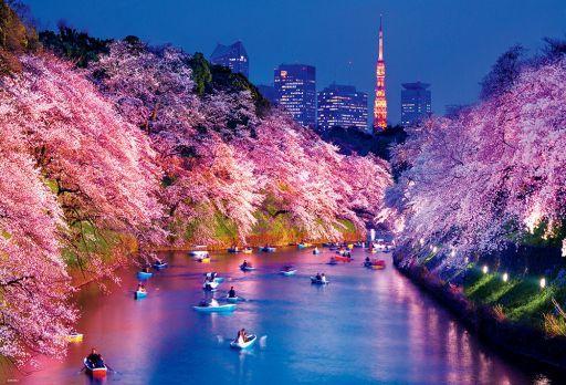 ビバリー 新品 パズル 千鳥ヶ淵の夜桜 「日本風景」 ジグソーパズル 1000ピース [51-275]