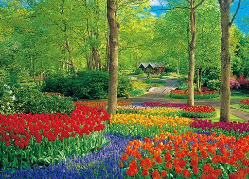 ビバリー 予約 パズル キューケンホフ公園 「海外風景」 ジグソーパズル 600ピース [66-180]