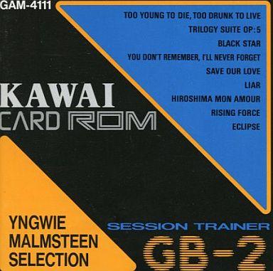 【中古】デジタル楽器 GB-2専用 CARD ROM YNGWIE MALMSTEEN SELECTION [GAM-4111]