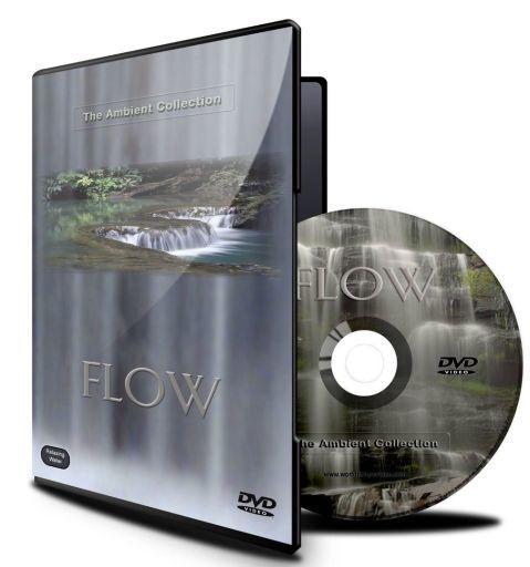【中古】輸入その他DVD BGV FLOW[輸入盤]