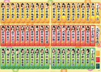 【中古】シール・ステッカー(女性) [単品] SKE48 千社札ステッカー 「SKE48 2015年 5000円福袋/10000円福袋」
