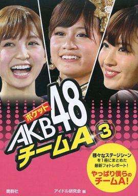 【中古】文庫サイズ写真集 ポケット AKB48 チームA(3)