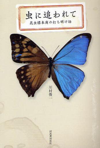 【中古】単行本(実用) <<エッセイ・随筆>> 虫に追われて 昆虫標本商の打ち明け話 / 川村俊一