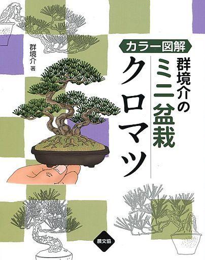 【中古】単行本(実用) <<趣味・雑学>> カラー図解 群境介のミニ盆栽 クロマツ / 群境介