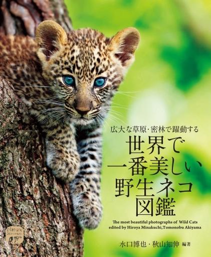 誠文堂新光社 新品 単行本(実用) <<動物学>> 世界で一番美しい野生ネコ図鑑