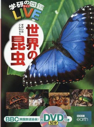 学研プラス 新品 単行本(実用) <<児童書・絵本>> 世界の昆虫