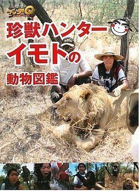 【中古】単行本(実用) <<動物・ペット>> 世界の果てまでイッテQ! 珍獣ハンターイモトの動物図鑑 / 山田洋子