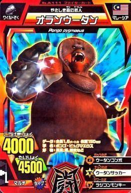 【中古】グレートアニマルカイザー/ノーマル/ファイターカード/ゴッド3弾 敵か味方か?!謎の黒獅子!! A-111 [ノーマル] : オランウータン