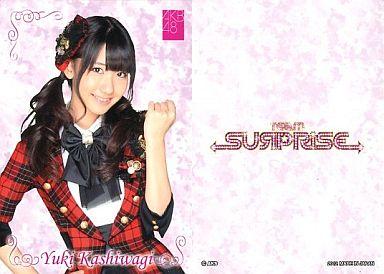 【中古】アイドル(AKB48・SKE48)/チームサプライズ トレーディングカード 柏木由紀/ノーマルカード/裏面白/チームサプライズ トレーディングカード
