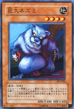 【中古】遊戯王/ノーマル/ストラクチャーデッキ遊戯編Vol.2 SY2-020 [N] : 巨大ネズミ