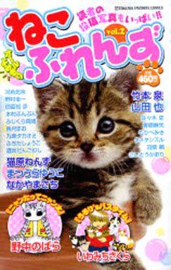 Cat catfish (2)