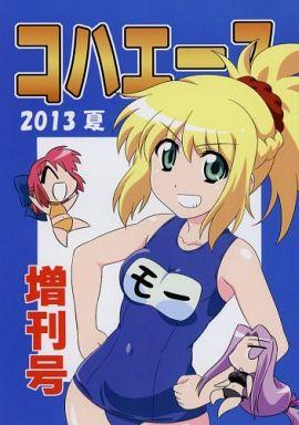Fate コハエース 2013 夏の増刊号 / 経験値ランド