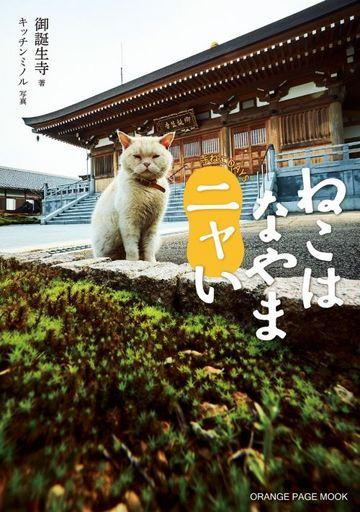 【中古】動物・ペット雑誌 ねこはなやまニャい