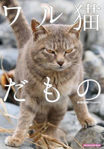 【中古】動物・ペット雑誌 ワル猫だもの