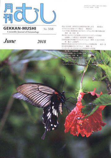 【中古】動物・ペット雑誌 週刊野鳥の世界全国版  32