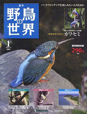 【中古】動物・ペット雑誌 週刊野鳥の世界全国版 1