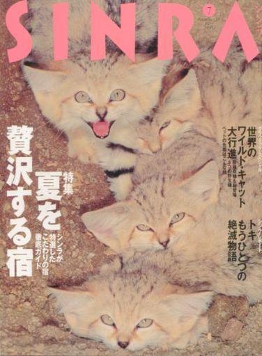 【中古】動物・ペット雑誌 SINRA 1995/7 No.19 シンラ