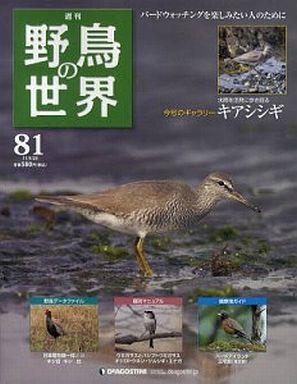 【中古】動物・ペット雑誌 週刊野鳥の世界全国版 81