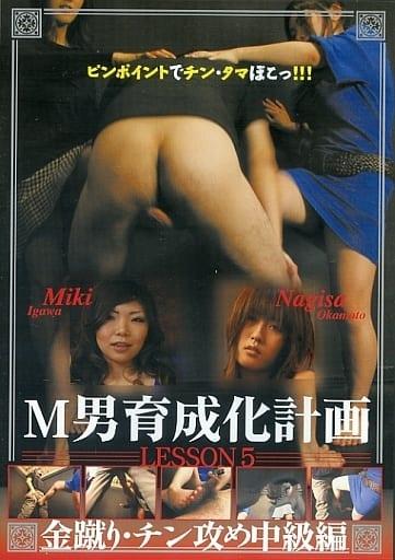 M男育成化計画 5 金蹴り・チン攻め中級編[DVD-R]