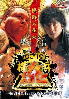 PROWRESTLING ZERO1 ~2012横浜大花火~