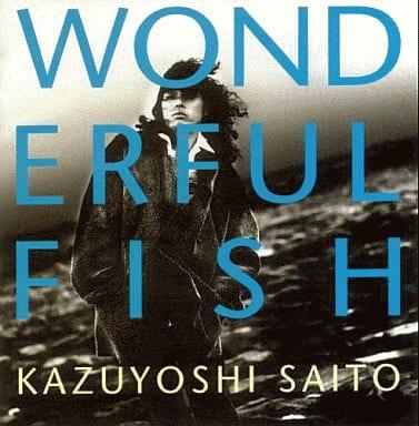 斉藤和義 / WONDERFUL FISH