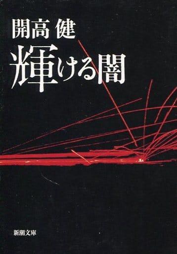 <<日本文学>> 輝ける闇