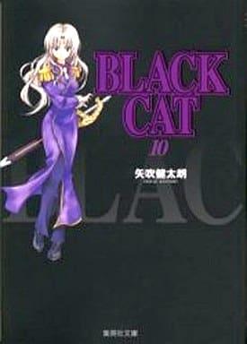BLACK CAT(文庫版)(10) / 矢吹健太郎