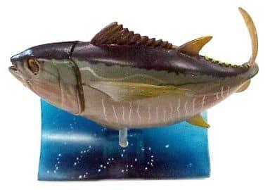 メバチマグロ 「原色海水魚図鑑 II」