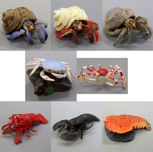 全8種セット 「地球生命紀行 『蟹・海老。』3」