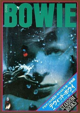 <<芸術・アート>> デヴィッド・ボウイ-デカダンスの閃光・ボウイの千夜一夜物語