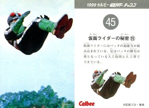 45 : 仮面ライダーの秘密(11)
