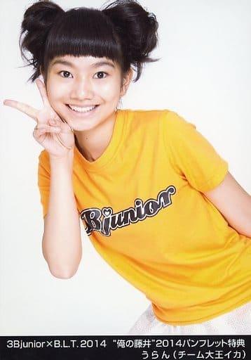 """チーム大王イカ/うらん/3B junior×B.L.T.2014 """"俺の藤井""""2014パンフレット特典"""