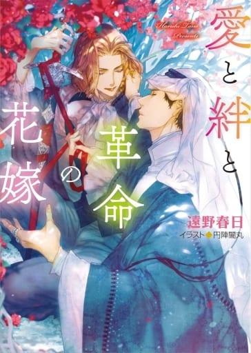愛と絆と革命の花嫁 砂楼の花嫁(4)