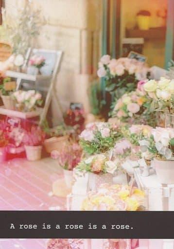 アイドリッシュセブン A rose is a rose is a rose. (二階堂大和×逢坂壮五) / 安眠まくら