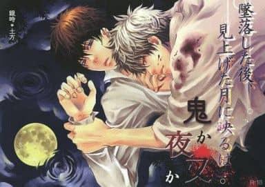 <<銀魂>> 墜落した後、見上げた月に映るは鬼か夜叉か。 (坂田銀時×土方十四郎) / アストロジィ