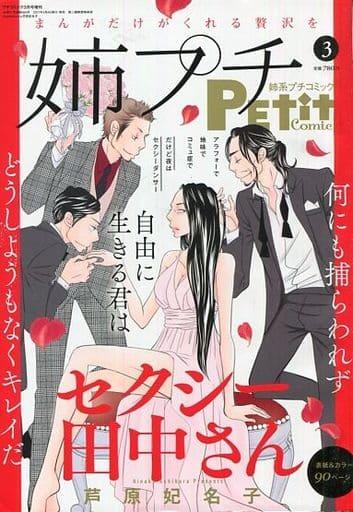 姉系プチコミック 2021年3月号