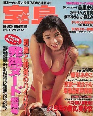 宝島 1995/01 No.313